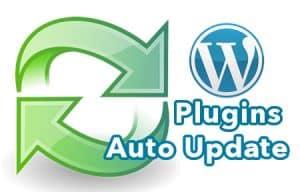 wordpress-auto-update